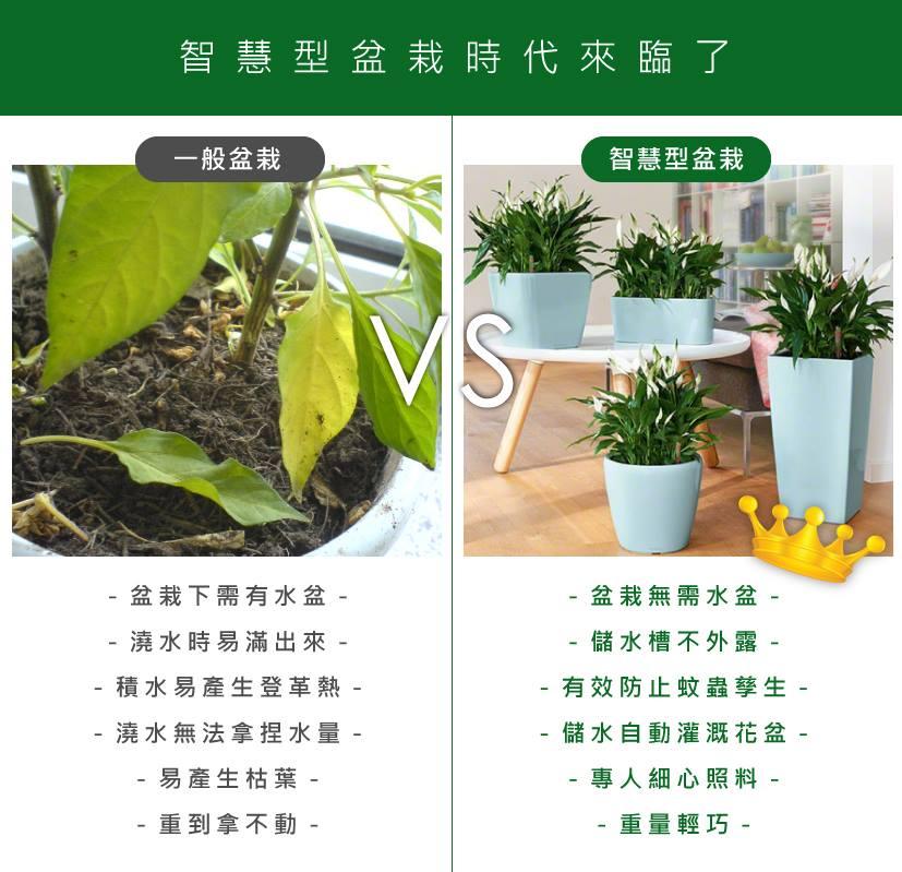 一般傳統盆栽和智慧型室內盆栽的比較差別